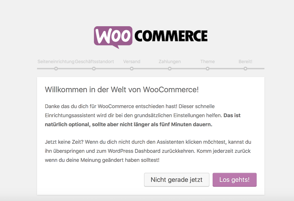 Shopsystem WooCommerce Einrichtung mit Assistenten